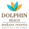Dolphin Beach